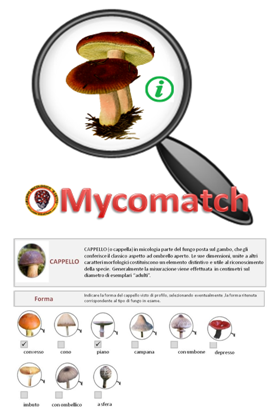 Mycomatch