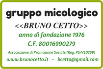 "Business Card G.M. ""Bruno Cetto"""